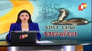 Bhadrak Snake Rescue Ops: Three More Adult Cobras Caught