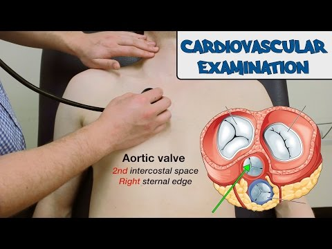Cardiovascular Examination - OSCE Guide (Old Version)