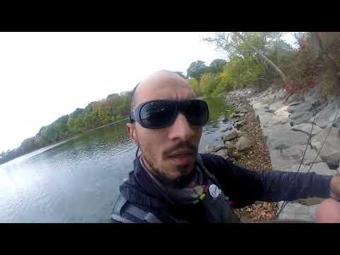 Staten Island Bass Fishing