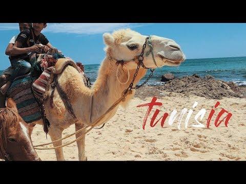 Camels, Beach and Sun / Tunisia Travel Vlog 2 / Hammamet #holidayvlog