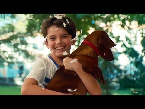 WIENER-DOG Trailer (Todd Solondz - 2016)