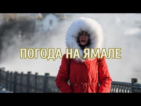 🔴 Синоптики пообещали метели и 30-градусные морозы на Урале