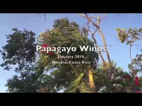Papagayo Winds in Costa Rica