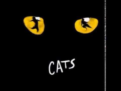 The Cats musical - Czech cast
