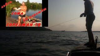 Сом рыбалка ловим сома на перемёт