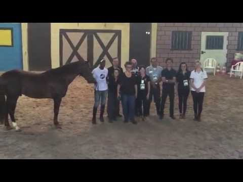 Straightness Training Instructor Clinic in Brazil - 2015