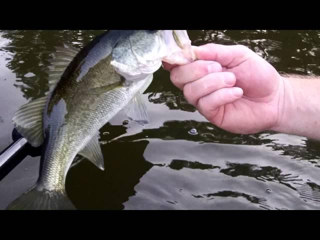 Emotion Kayaks Renegade XT - Bass Fishing