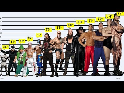 WWE WRESTLERS HEIGHT Comparison From SHORTEST To TALLEST