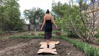 High Heels Cardboard Crush, High Heels Sinks In Cardboard, High Heels Sinking (scene 462)