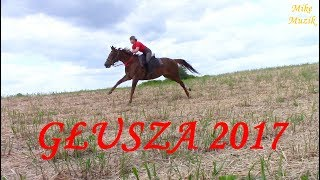 Rajd konny - Głusza 2017 - KJ DERESZ