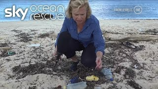 Sky News broadcast live from the depths of the Indian Ocean as we t...