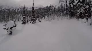 The race for untouched pow!