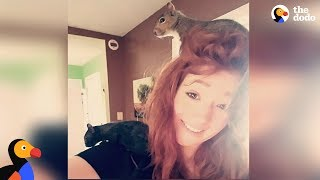 Woman Has Rescue Squirrels Running All Over Her House | The Dodo