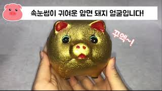 [피빅스/SM판촉물] …