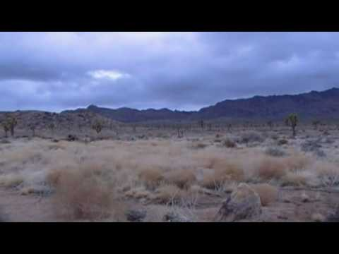 Mojave Desert Trip & Flash Flood Tips