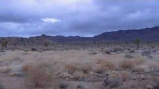 Mojave Desert Trip & Flash Flood Tips
