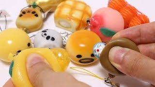 Squishy Squeeze Toy Collection