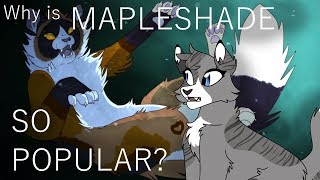 Why is Mapleshade so popular? [Warrior cats analysis]