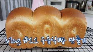 우유식빵 만들기, 파이렉스 유리볼, 베이킹 브이로그, …