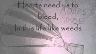 Modest Mouse - Life Like Weeds Lyrics