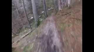 MTB-Tour Tegernsee, Hirschberg Trail