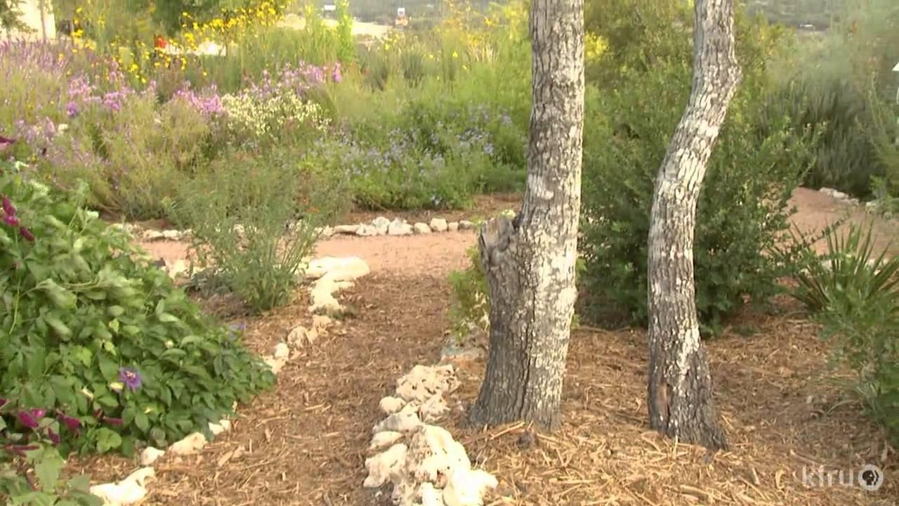 Butterfly Garden Design | Bulverde/Spring Branch Library | Central Texas  Gardener   YouTube