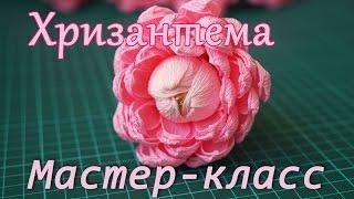 Цветок из бумаги с конфетой/Хризантема/Мастер-класс(В этом видео покажу как сделать хризантему из гофрированной бумаги с конфетой. Материалы: гофрированная..., 2015-07-03T14:02:06.000Z)