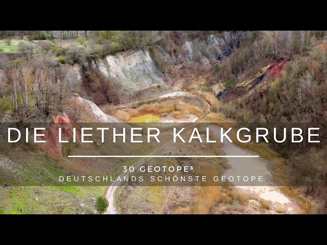 Die Liether Kalkgrube - 30 Geotope³ - Deutschlands schönste Geotope
