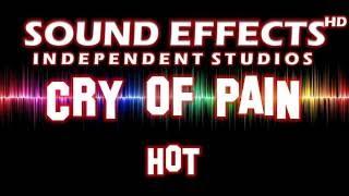 SFX - SOUND EFFECT: CRY OF PAIN (HOT) - SCHMERZSCHREI (HEISS)