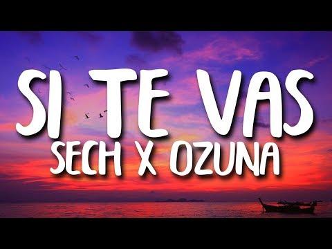 Sech, Ozuna - Si Te Vas (Letra/Lyrics)
