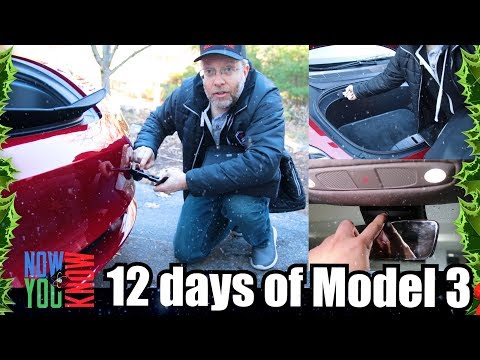Lots of Little Goodies - 12 days of Model 3!