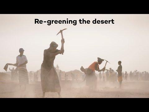 Turning the desert green in Burkina Faso