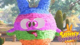 Sunny Bunnies | JOGOS DE ANIVERSÁRIO | Desenhos animados | WildBrain em Português