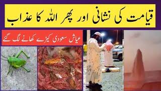 SAUDI ARABIA UPDATES | GRASSHOOPERS | al qaseem | makkah | 57 dunya | urdu |