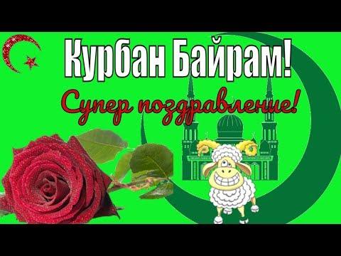 Красивые видео поздравления с праздником Курбан Байрам на праздник курбан-байрам