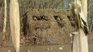 Kentucky Duck Hunt - Must see!