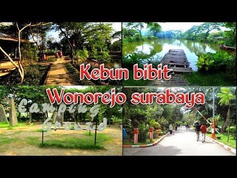 wisata-kebun-bibit-wonorejo-surabaya