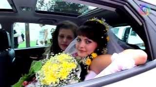 Свадьба - Лена и Костя - Light Day