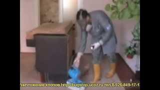 Уничтожение клопов в квартире(Все подробности по уничтожению насекомых, препаратах и пр. Вы можете узнать на сайте http://dezmoscow.ru/ или позвон..., 2013-05-06T14:36:58.000Z)