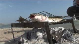 Рыбалка на Азовском море 9 http://trey.ueuo.com(Рыбалка на Азовском море 9 http://trey.ueuo.com., 2010-01-05T14:46:13.000Z)