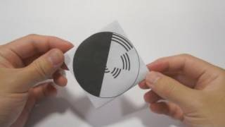 Optical Illusion - Benham's Disk using origami Spinning Top