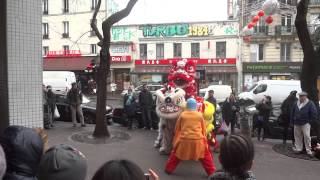Nouvelle ans chinois 2014 Paris Lion