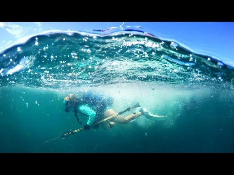 Spearfishing in the Gulf of Mexico