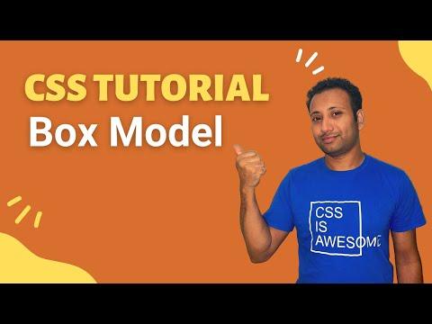 CSS3 Bangla Tutorial 27 : Css Box Model