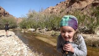 Jordan Trail - South of Petra - 3 Day Hike