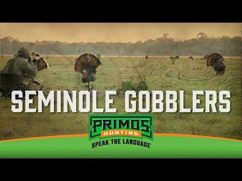 Seminole Gobblers – Florida Osceola Turkey Hunt – Primos Truth About Hunting Season 18