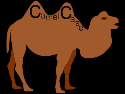 What is Pascal Case & Camel Case ?