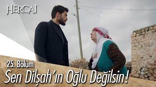 Download Sen Dilşah'ın oğlu değilsin! - Hercai 25. Bölüm Mp3 and Videos