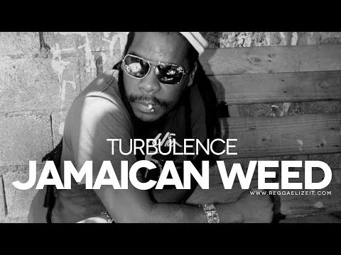 Turbulence - Jamaican Weed (Reggae Attack Babylon Riddim) - Granite Productions - February 2014
