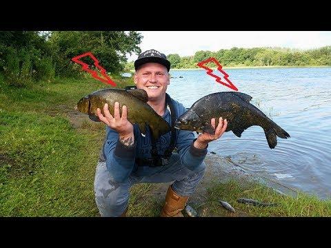 ВОТ Это Клёв!!!Как поймать КРУПНОГО Леща и Линя.Рыбалка с Макаром - лещ линь